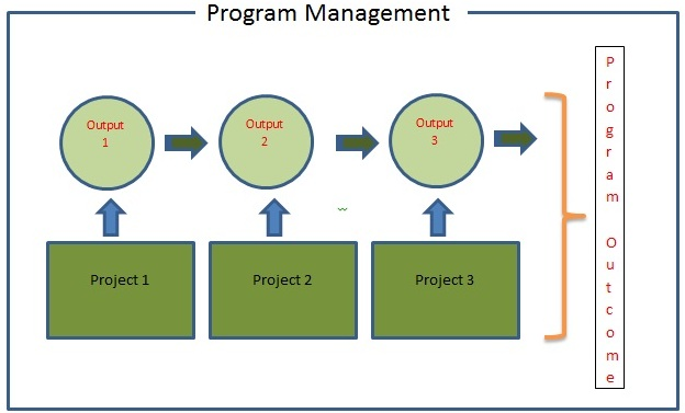 Elements of Program Management- Program Management Vs Project Management